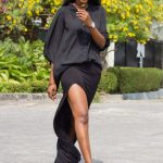 The Style Chronicles by Dodos- Iamisigo
